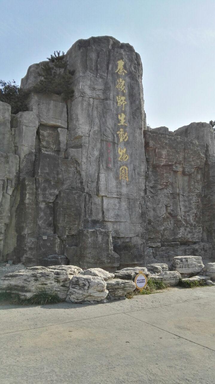 秦岭野生动物园旅游景点攻攻略e3视频略图图片