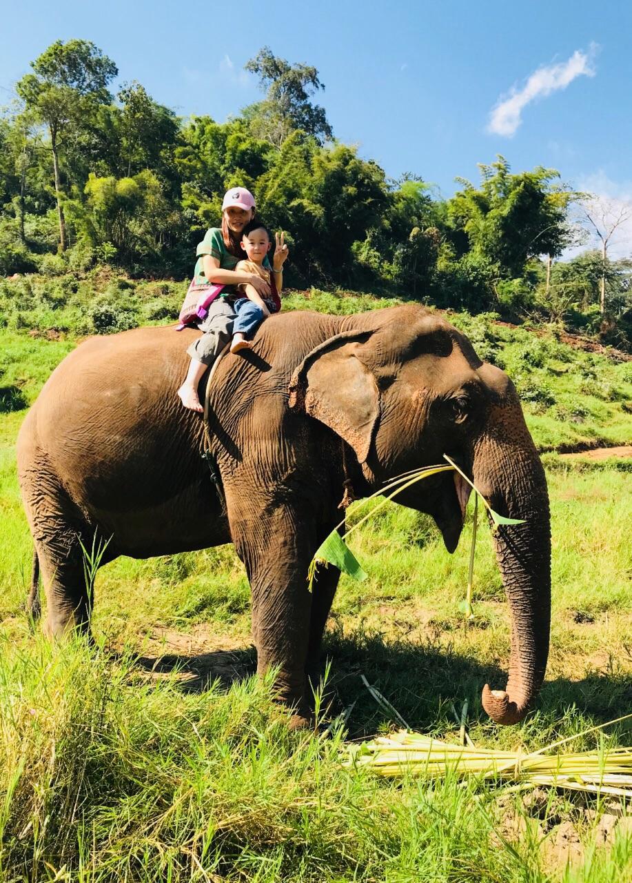 泰国大象自然保护公园