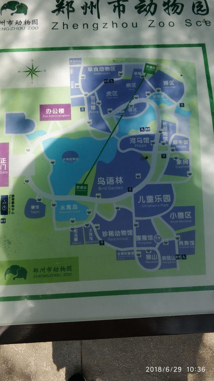 郑州动物园是一座专业性动物园,饲养了一百多种近千只动物,包括珍贵保护动物东北虎、金钱豹等,另外还有非洲象、亚洲象、大猩猩、黑猩猩、白鹳、冠鹤、平顶猴、食蟹猴、短尾猴等动物。 由于园区地处平原,没有天然山岭,故人工修建了多处人工山、开辟大小人工湖6个,相互以桥涵相联,南湖为水禽的天堂,湖面鸳鸯成对嬉戏,天鹅游弋。80年代设计修建的熊猫馆、河马馆、猩猩馆、象房,新颖别致、别具一格,既为建筑,又是一景,许多馆舍有室内外展厅,一年四季均可供游人观赏游览。