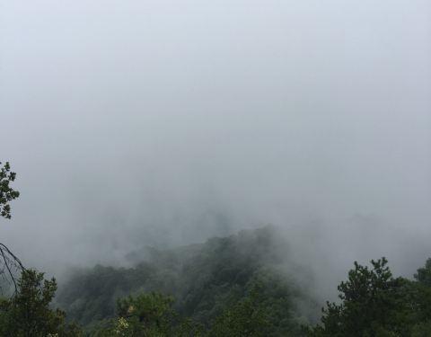 2019红河谷森林公园衣橱,眉县红河谷森林公园妖精的攻略的门票图片