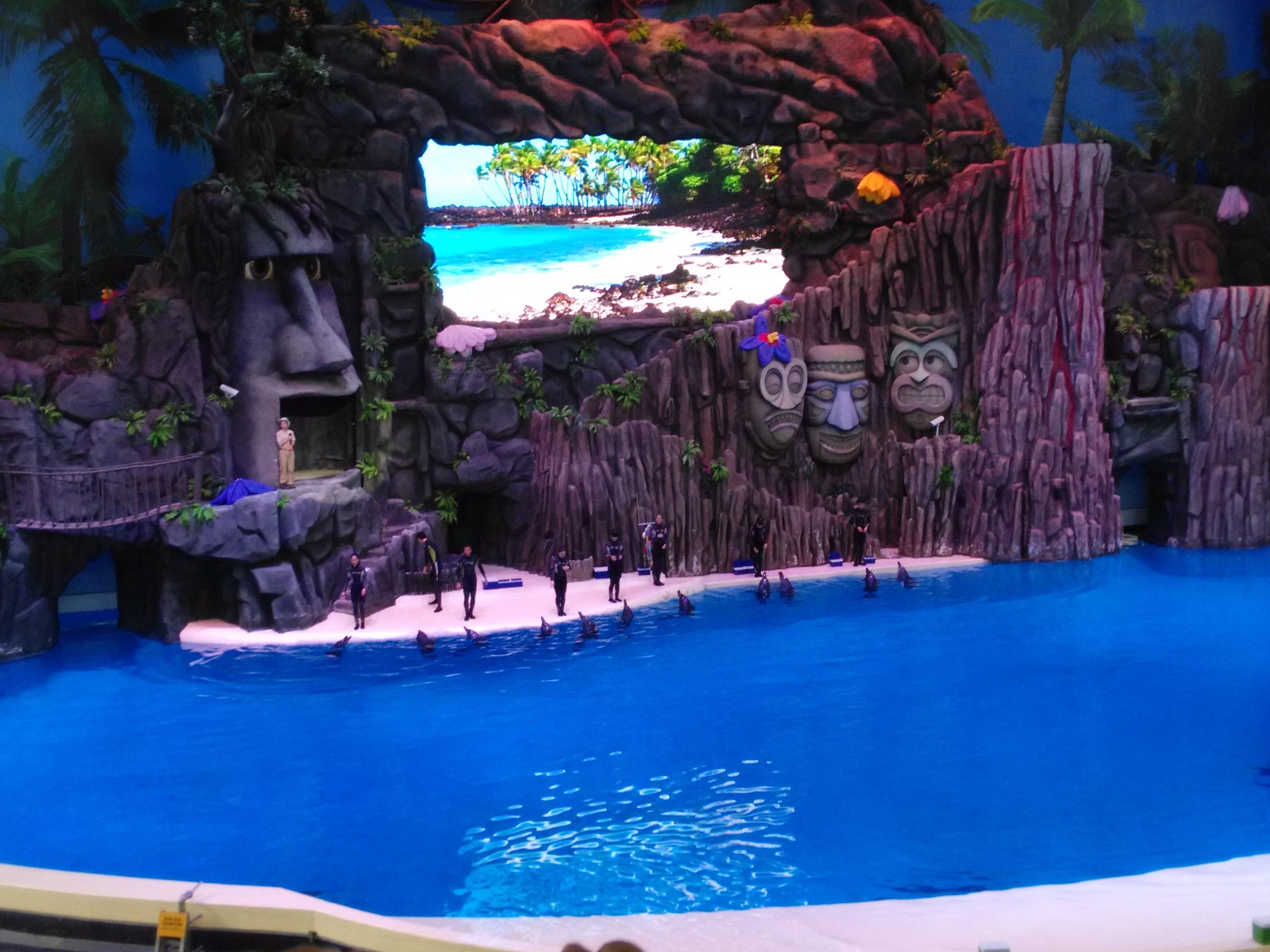 是全球较大的海洋动物主题公园,很多珍稀的海洋动物,各个剧场的表演都