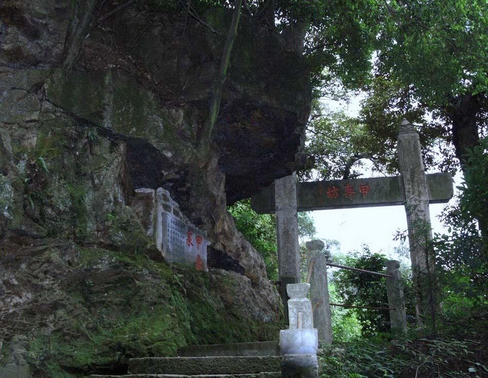 天童国家森林公园图片