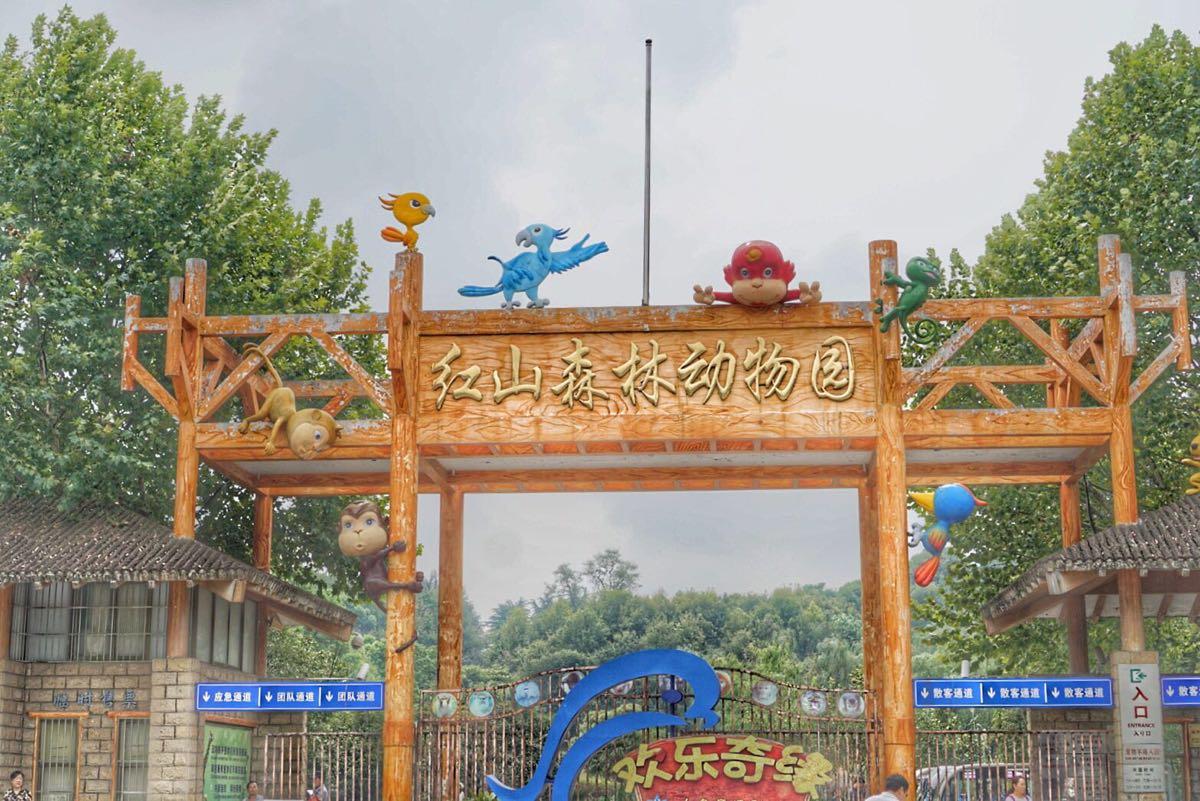 红山森林动物园