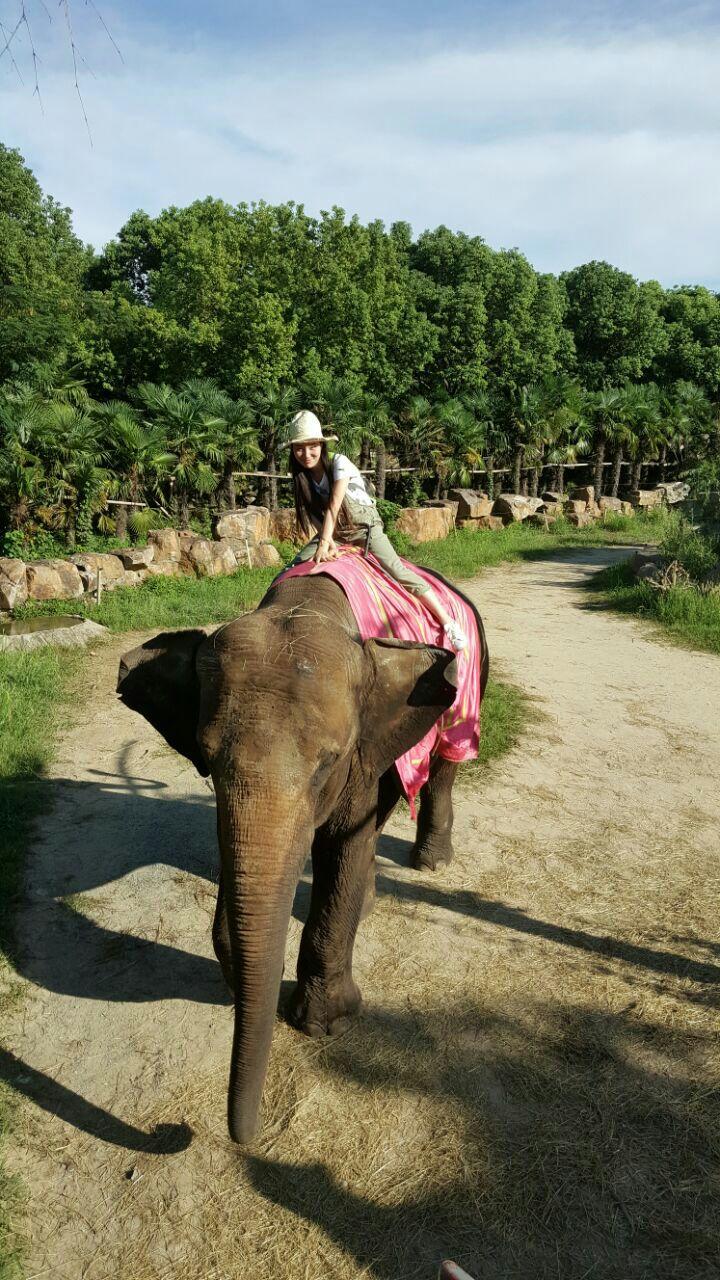 【携程攻略】巴厘岛巴厘野生动物园好玩吗,巴厘岛巴厘