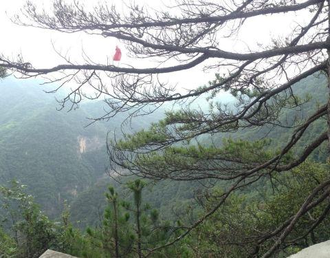 2019红河谷森林公园门票,北京红河谷森林公园洛阳-眉县自驾旅游攻略图片
