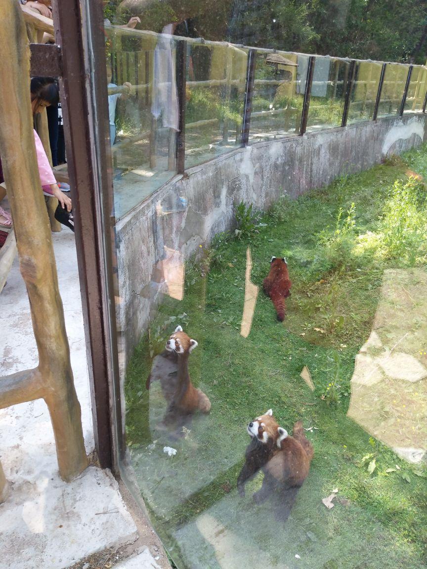 沈阳森林动物园