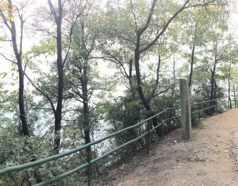 2019红河谷森林公园门票,眉县红河谷森林公园香肠游戏派对玩法图片