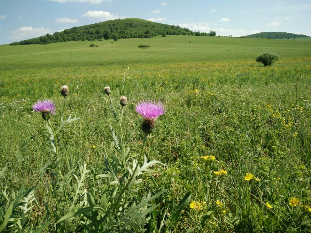 乌兰布统草原旅游景点攻略图西安自驾旅游攻略5天图片