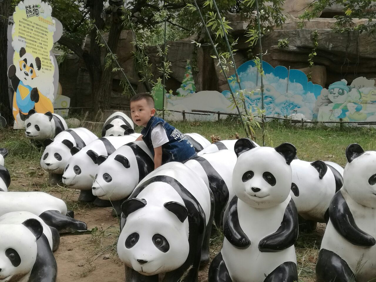 【携程攻略】西安秦岭野生动物园好玩吗,西安秦岭野生