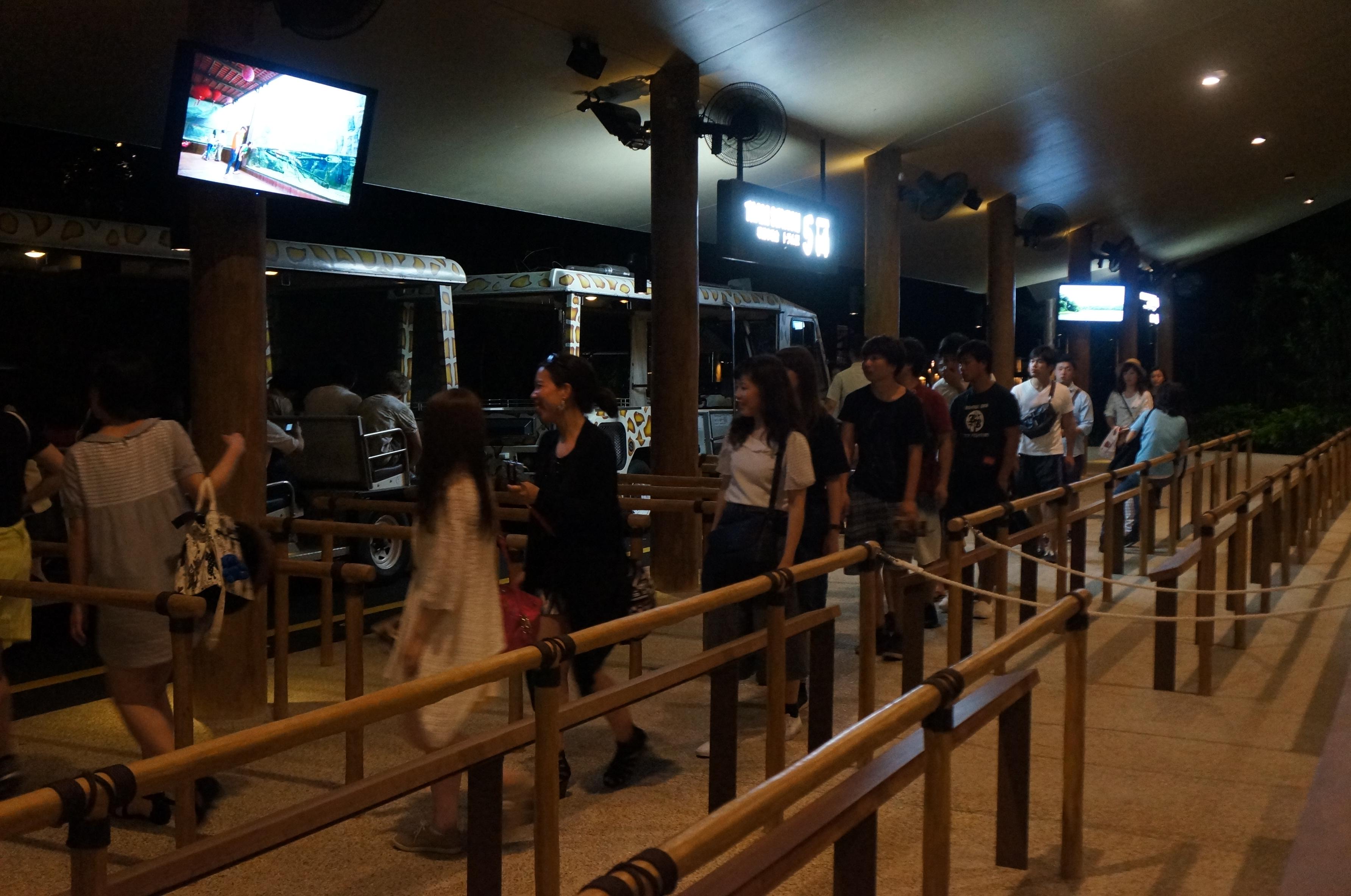 07:15在夜幕尚未完全降临之际,夜间动物园开门营业,游客都是凭指定时间的入场券进场。因为急着搭乘有限的游览车,因此排队的游客就很多,而且进入后也都是蜂拥前往搭乘游览车的车站。我们因为是已经预约了后续的中文游览车,因此也就没有必要去凑那个热闹。我们依据夜间动物园的简介提示,初步排定了今晚在此的游览程序,检票入场后直接奔动物表演露天剧院,观看07:30的第一场表演。半圆形的露天剧场座位不少,观看的游客也很多,但整个表演却很一般,出场的动物表演的基本都是很低智商的动作。再加上主持人说英语我们也听不懂,因此很多