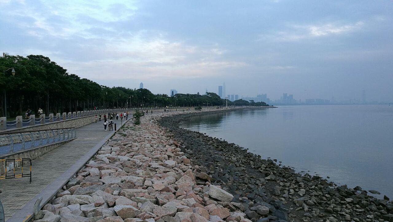 深圳红树林公园门票_红树林