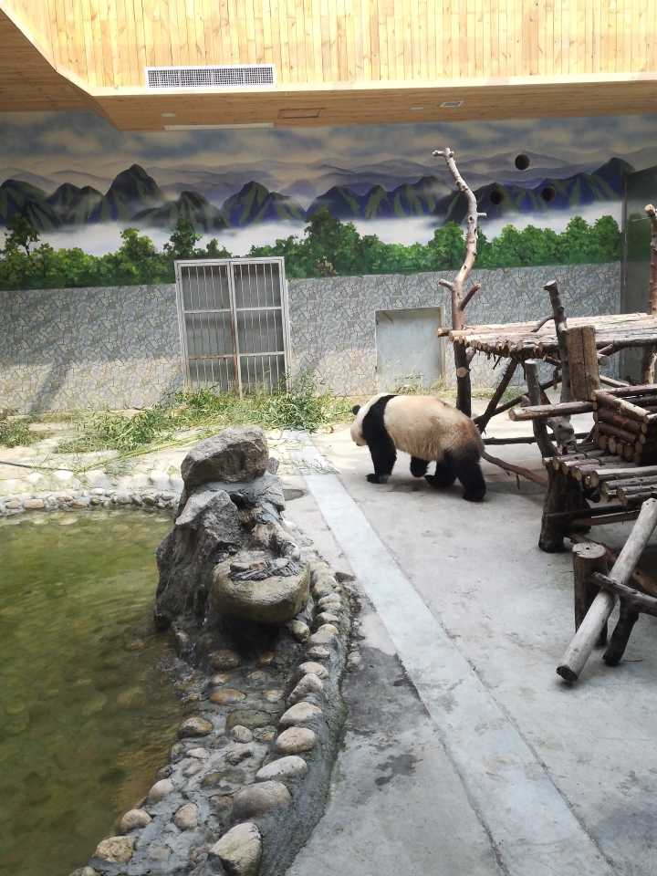 秦岭野生动物园旅游景点攻略图南岔v略图攻略图片