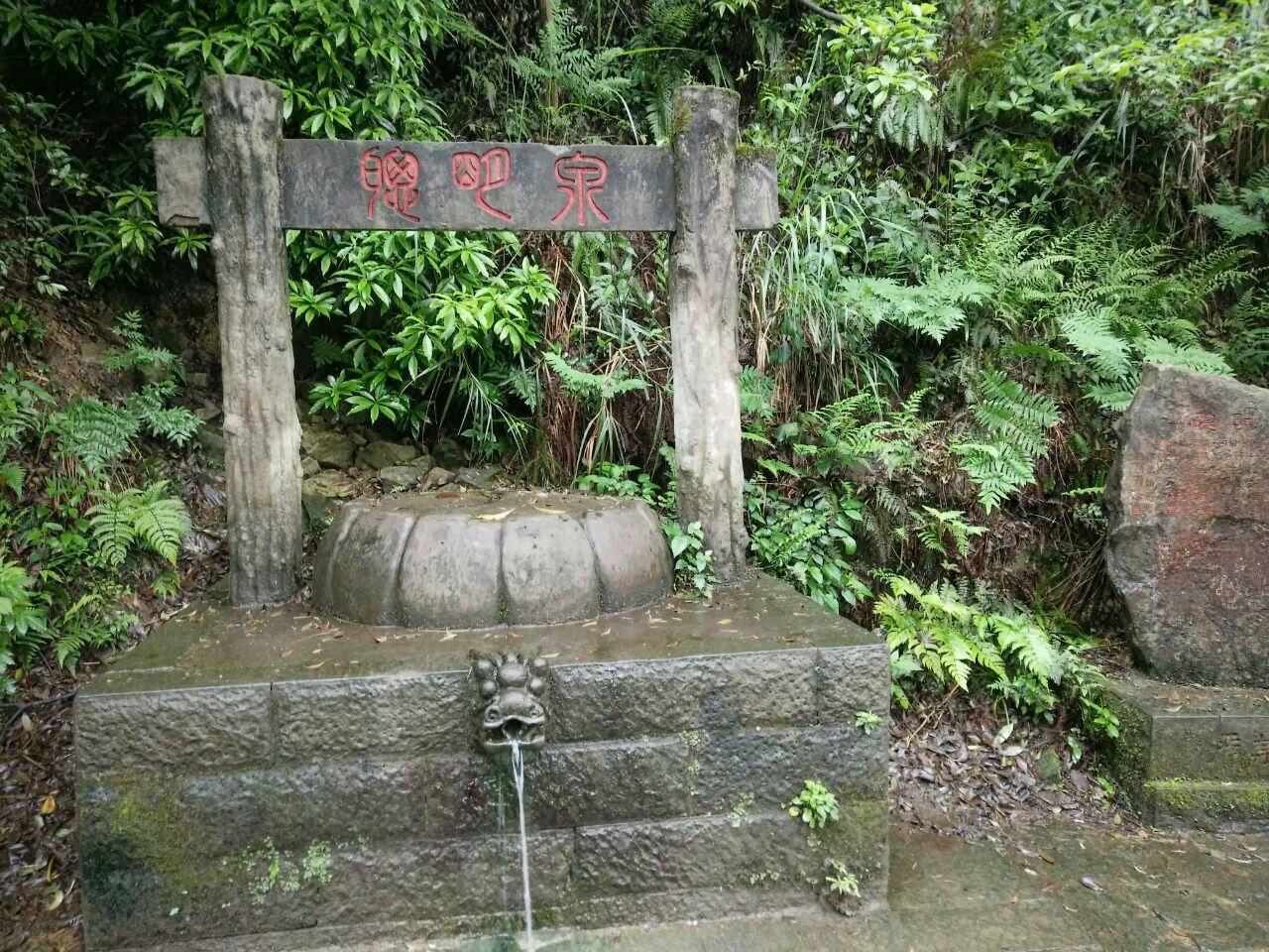 【携程攻略】重庆歌乐山家森林公园景点
