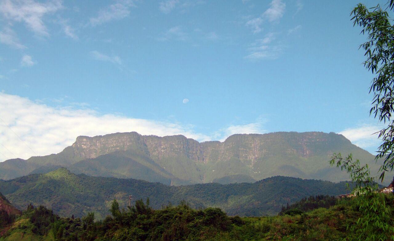 瓦屋山原始森林猎奇探险景区,玉屏人工林海度假区,八面山寻古揽胜区图片