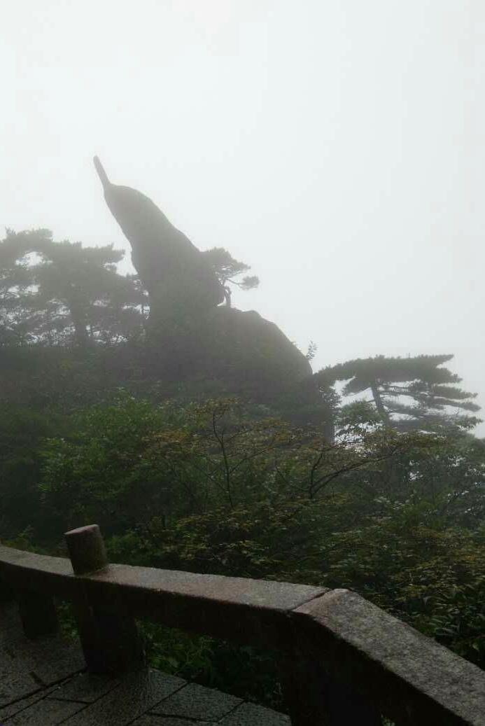 全是雾,偶然有大风的时候可以看到很漂亮的风景,但时间很短,没看到