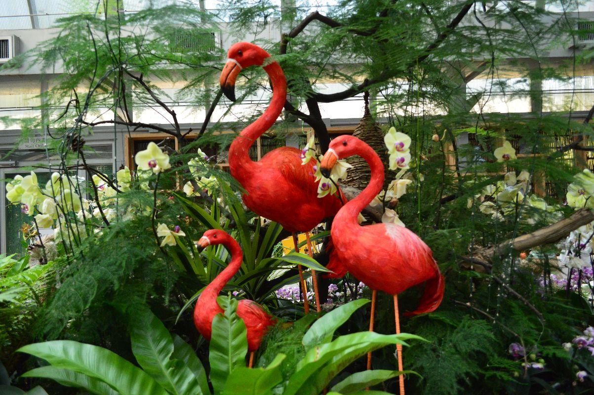 以前是一个私家动物园 给政府之后变成了公共绿地 植物多半是本地植物