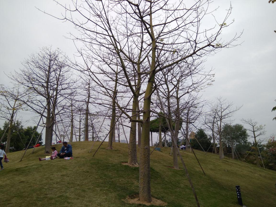 番禺兒童公園是廣州市最大的區級公益性兒童公園,規劃設計理念為以現代手法及番禺水鄉特色元素表現嶺南園林的傳統精髓,設計方案以親水、生態、科普、野趣為理念;以娛樂性、教育性、康體性、生態性、安全性為原則,充分針對兒童陽光成長的身心需要,打造出一個服務于0-12歲具有特色的兒童主題公園。