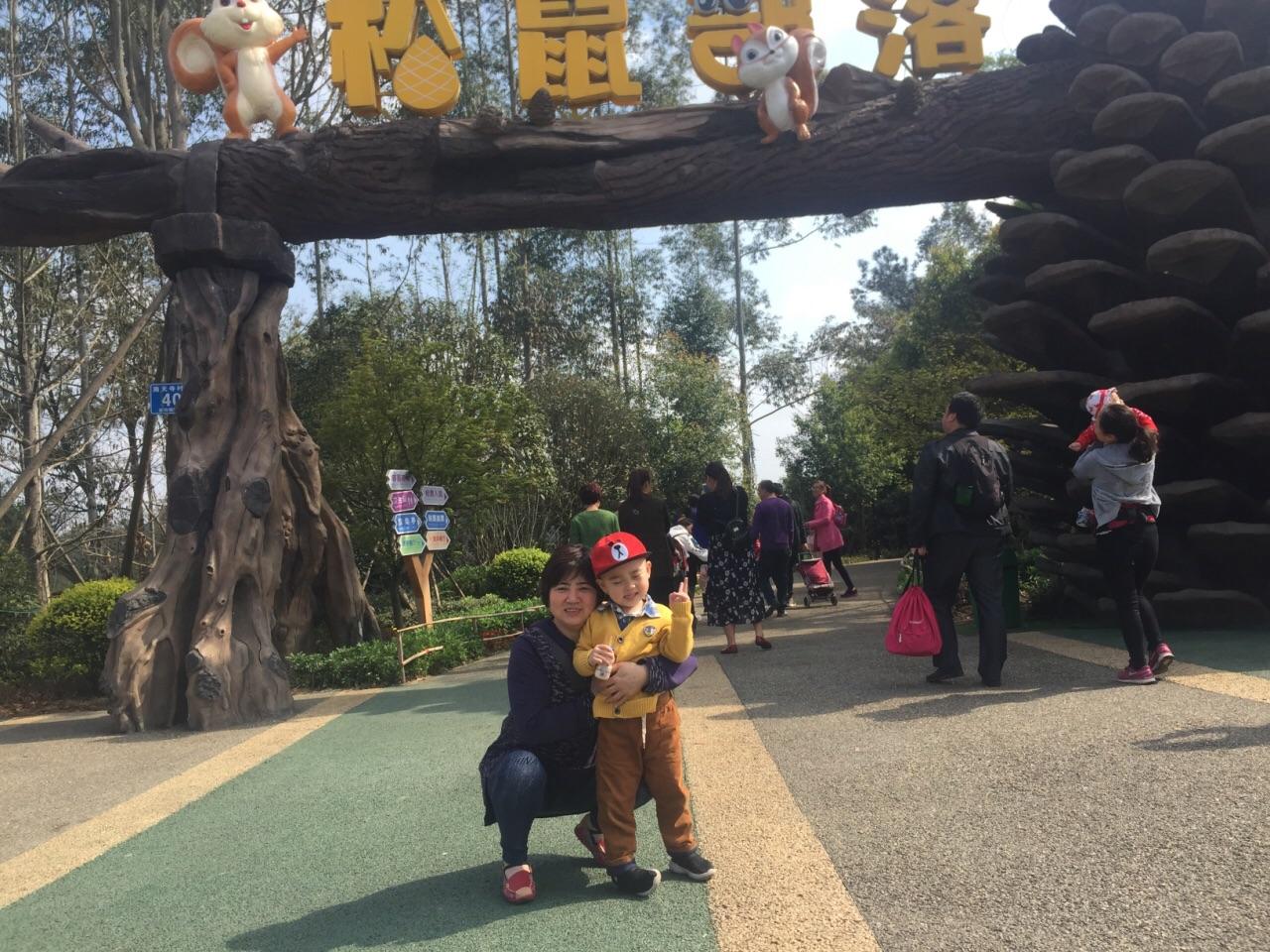松鼠部落森林假日公园图片