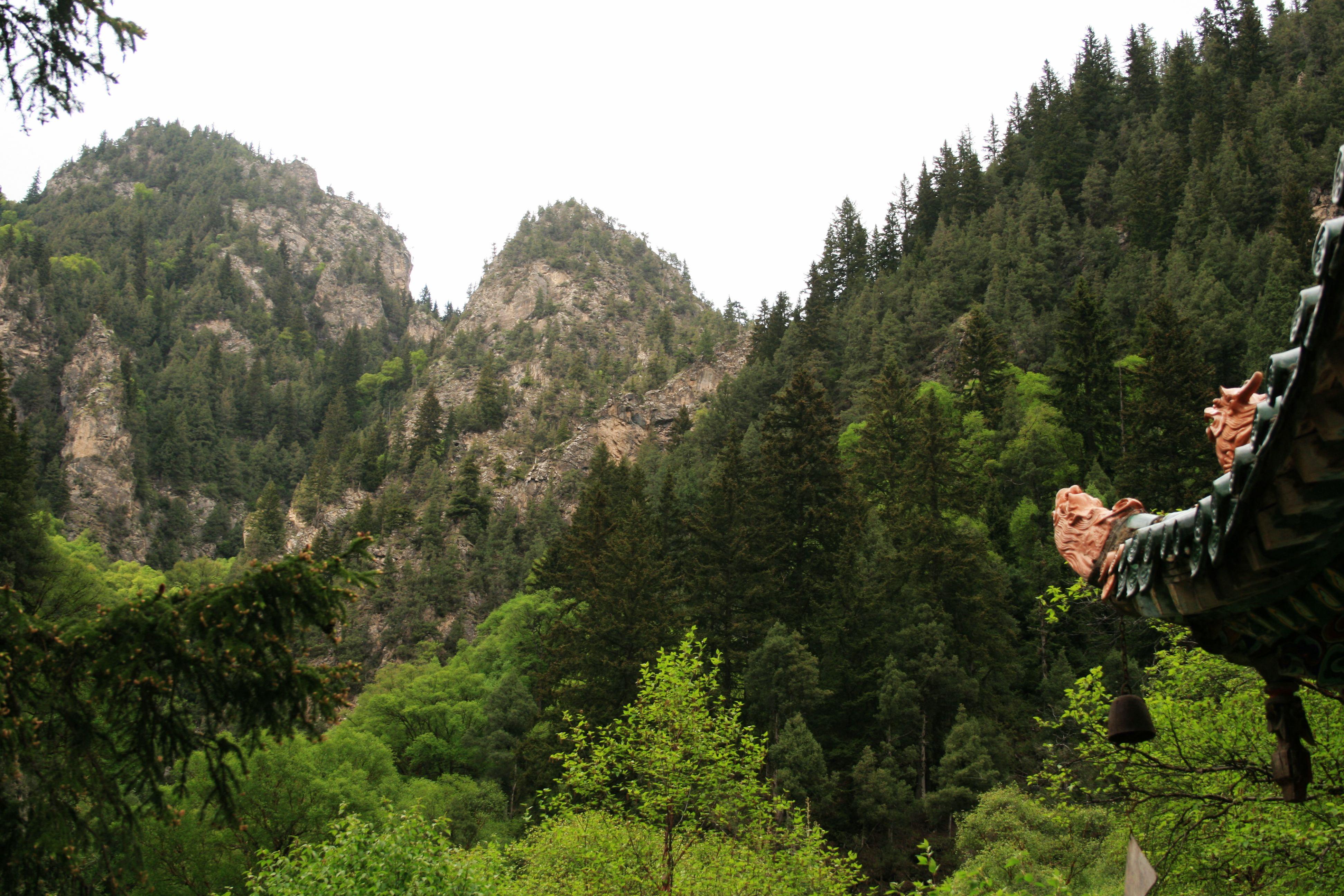 吐鲁沟国家森林公园图片