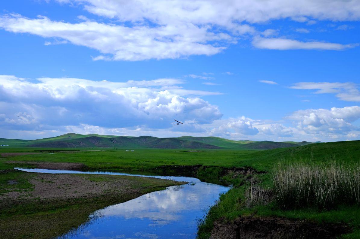 壁纸 草原 风景 摄影 桌面 1195_796