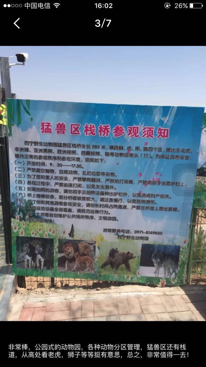 位於青海省西寧市西山林場境內的青藏高原野生動物園,又名西寧野生動物園,於2009年5月開園,佔地面積900公頃,是青藏高原唯一的、海拔最高的大型綜合野生動物園,是一處集野生動物觀賞、保護、科研、繁育和科普教育為一體的國家AAAA級景區和國家級科普教育基地。該園規劃展出動物品種將達兩百餘種三千餘隻,以展出具有青藏高原特色的野生動物為主。其中,國家一級保護動物有雪豹、大熊貓、藏野驢、白唇鹿、野牦牛、黑頸鶴、胡禿鷲、金雕等;國家二級保護動物有猞猁、荒漠貓、岩羊、血雉、藏馬雞等;還有高原精靈藏羚羊、普氏原羚以及其