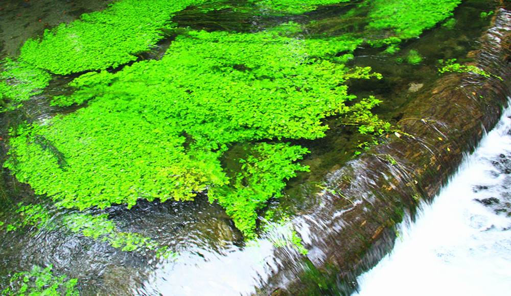 水磨沟风景区