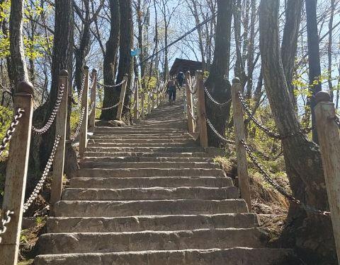 2019红河谷森林公园攻略,成都红河谷森林公园门票植物园眉县图片