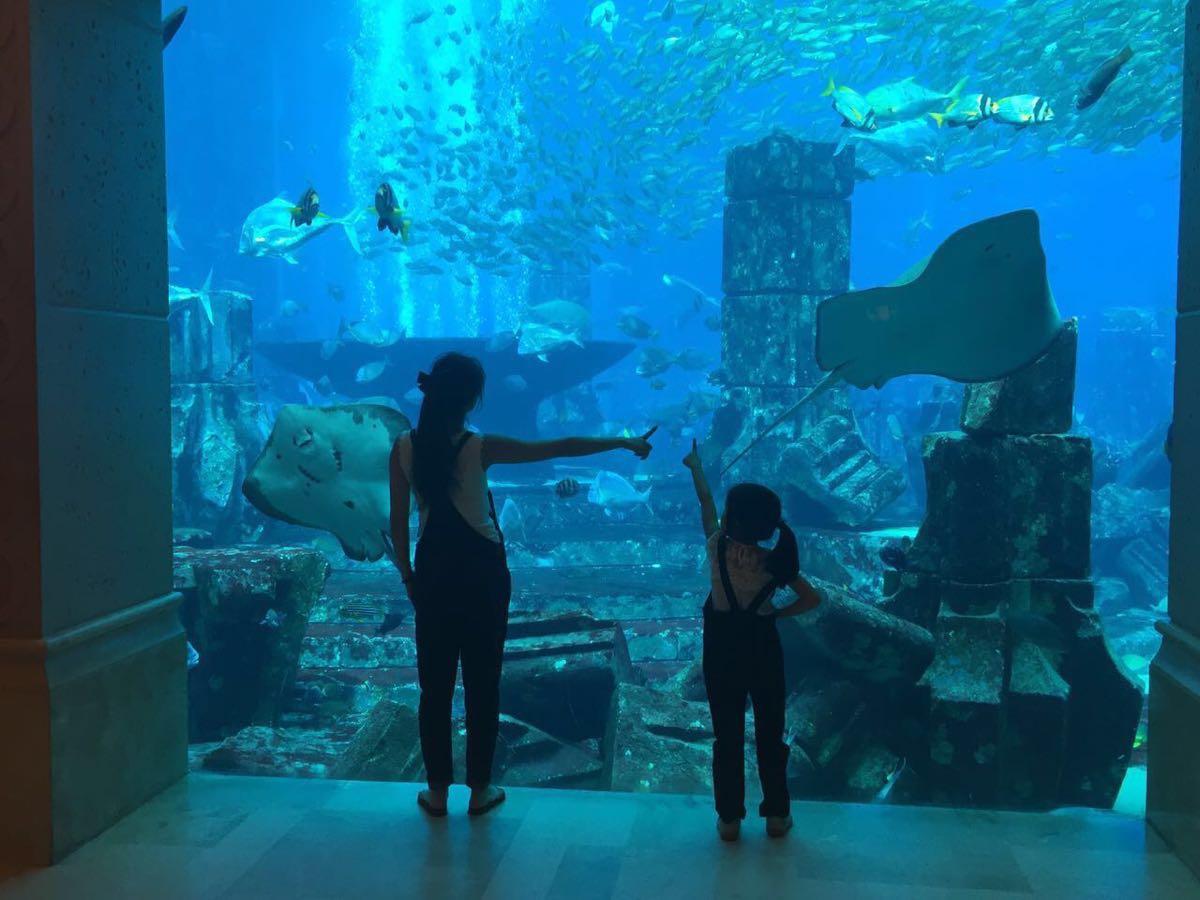 棕榈岛亚特兰蒂斯酒店图片