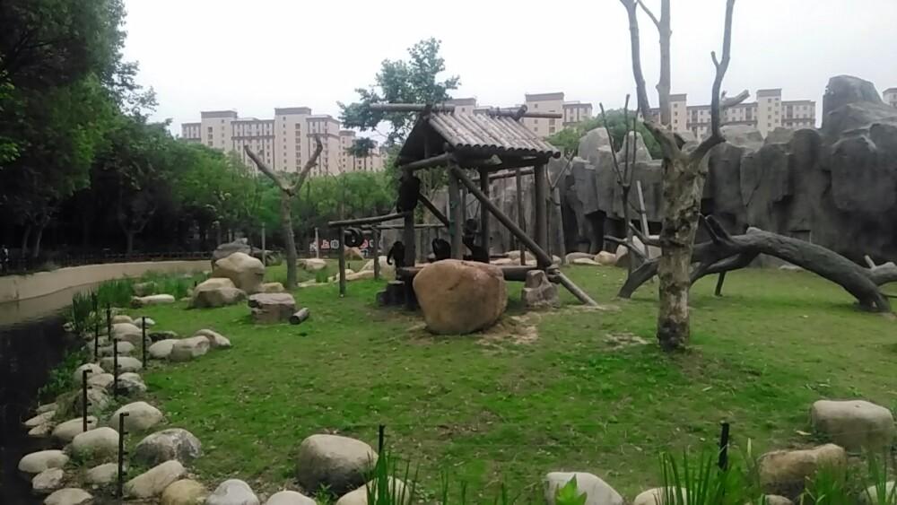 另外有马戏团表演,总之上海野生动物园值得游览