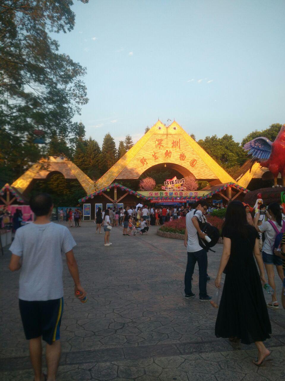 【携程攻略】深圳深圳野生动物园景点,我是夜场去的