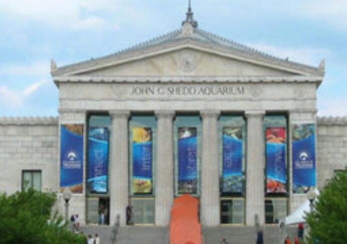 谢德水族馆是世界上最大的室内水族馆,带朋友和他小孩过来玩,感觉