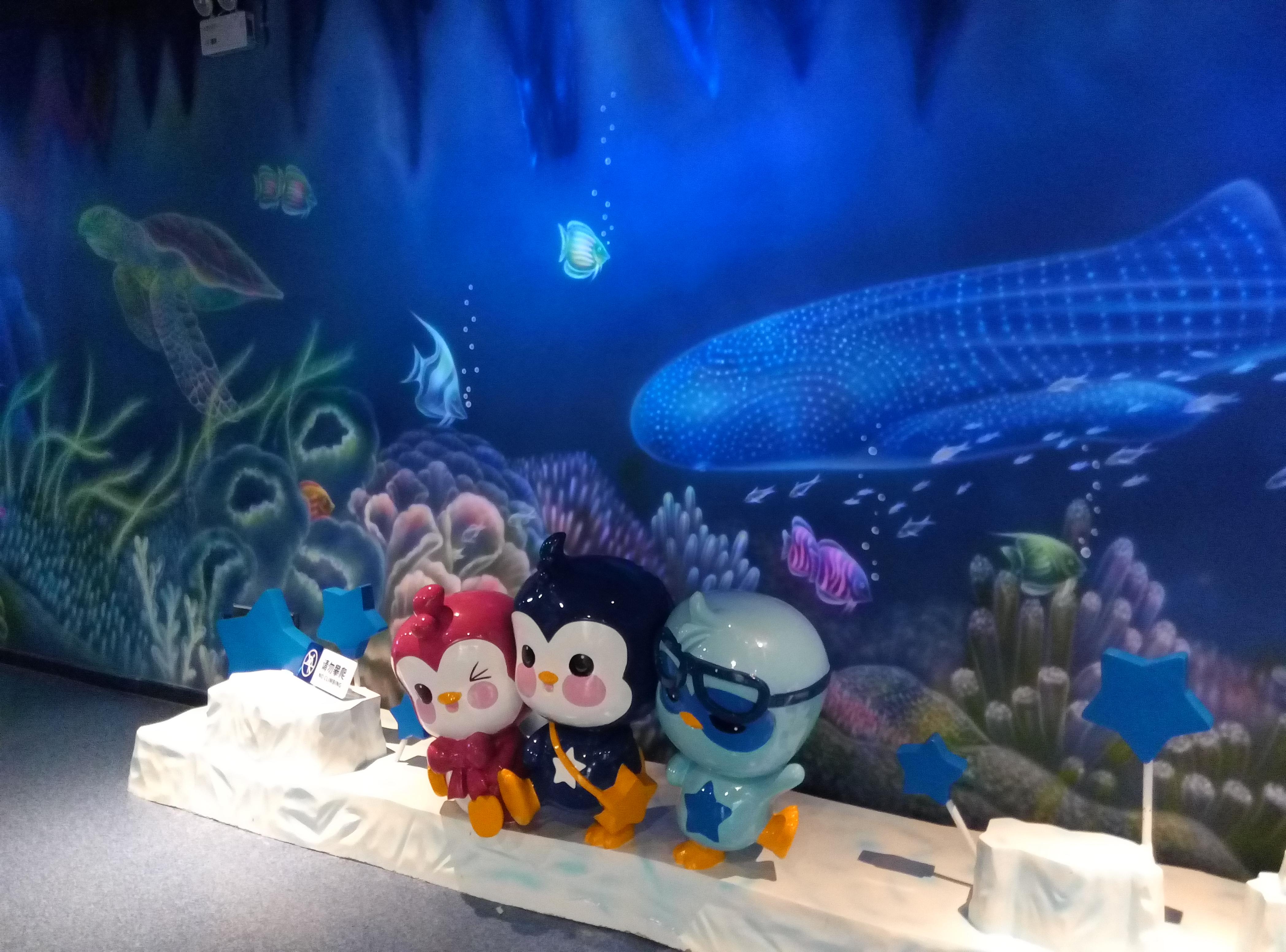 去珠海长隆海洋公园_广州动物园海洋公园怎么去
