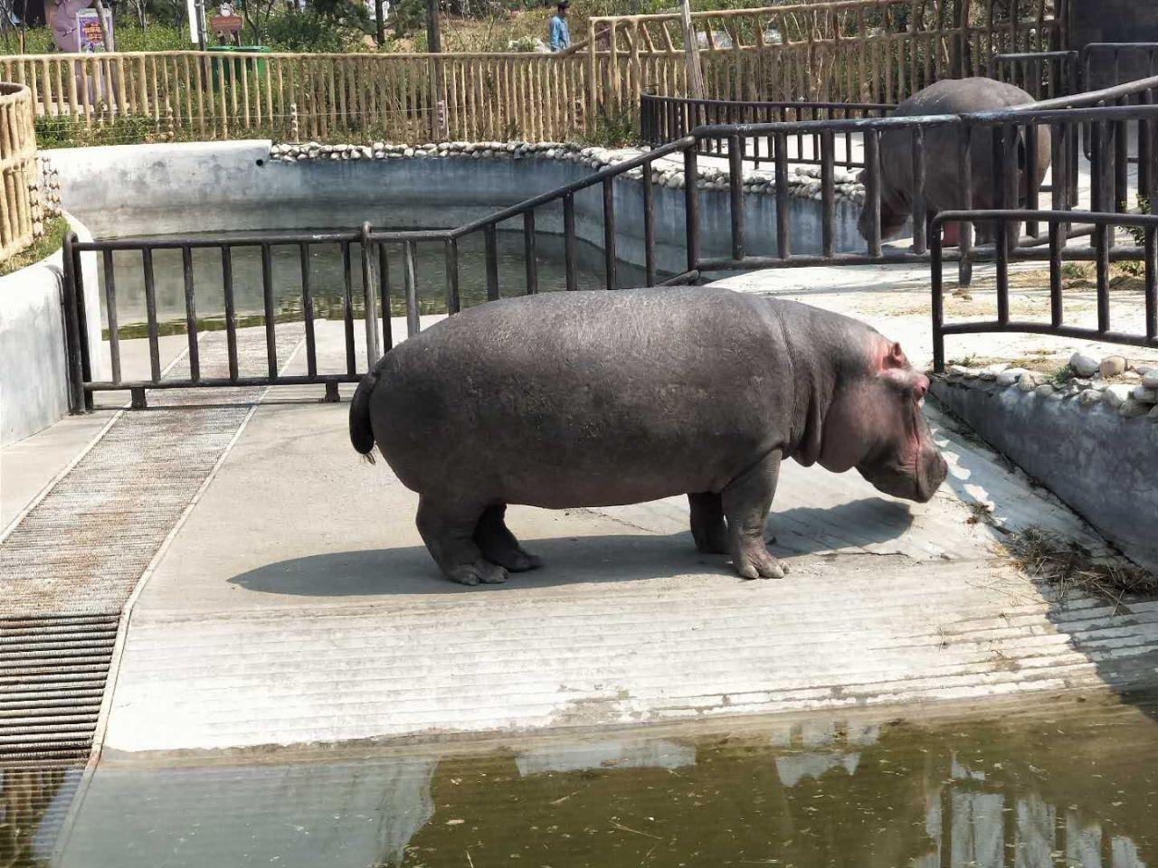 济南野生动物园旅游景点攻略图
