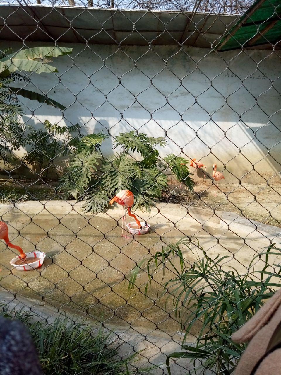 成都动物园