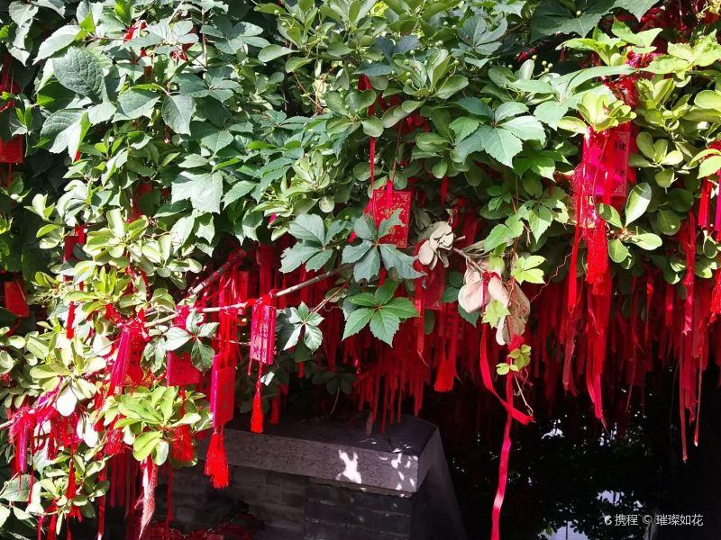 广州求姻缘灵验的寺庙,拜过的人都说很灵验,你知道是哪里吗