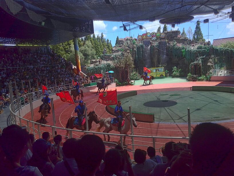 上海野生动物园一日游【畅游动物王国 南通出发】