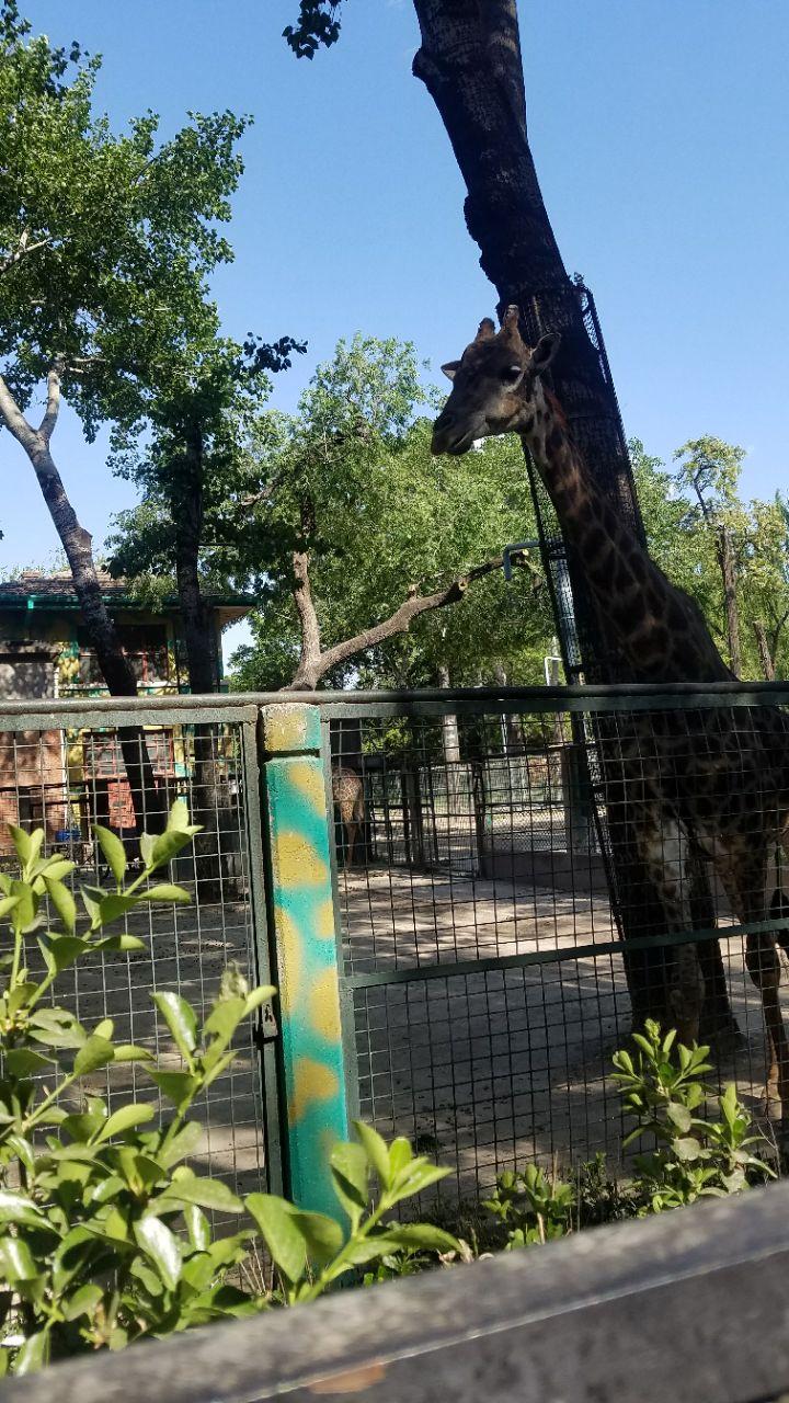北京动物园