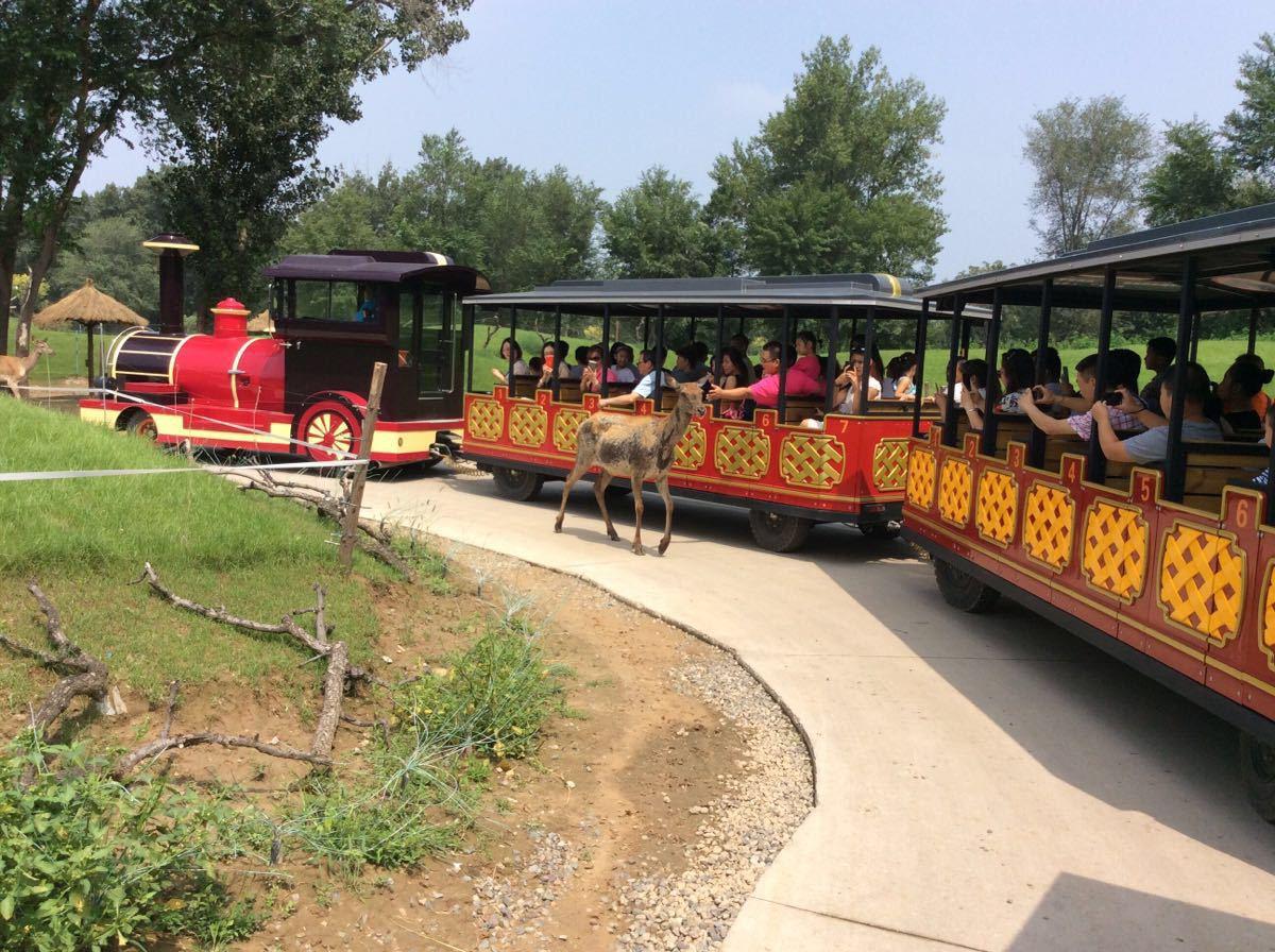 【携程攻略】北京北京野生动物园家庭亲子点评