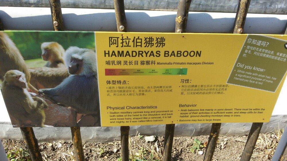 【携程攻略】黑龙江龙沙动植物园家庭亲子点评
