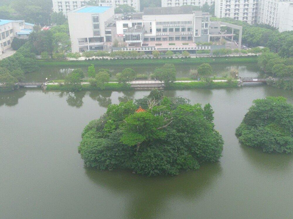 福建农林大学