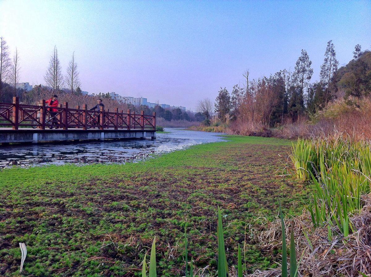 鹤壁市花溪新城规划图