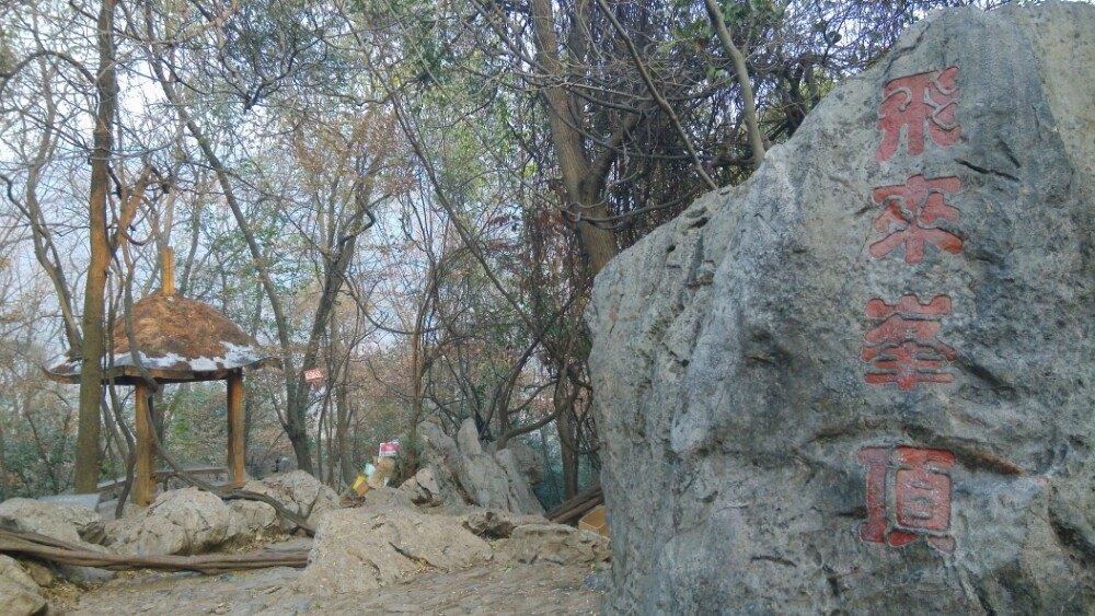 灵隐杭州(飞来峰)攻略走出去24小时完美结局景区图片