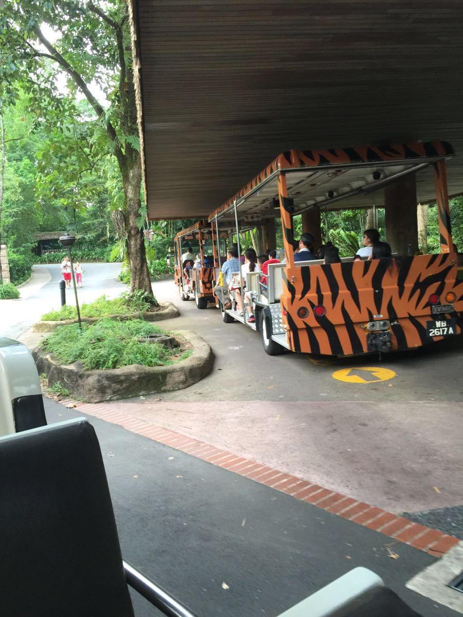 【携程攻略】新加坡新加坡动物园适合家庭亲子旅游