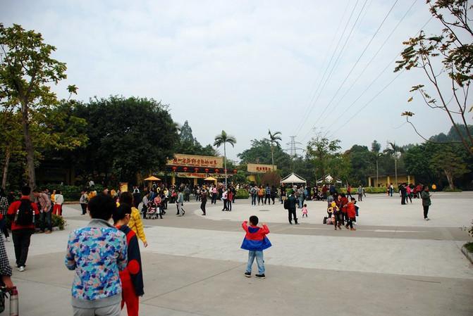 春节广州游(长隆动物园,欢乐世界,长隆酒店,大马戏,小蛮腰,五羊雕像)