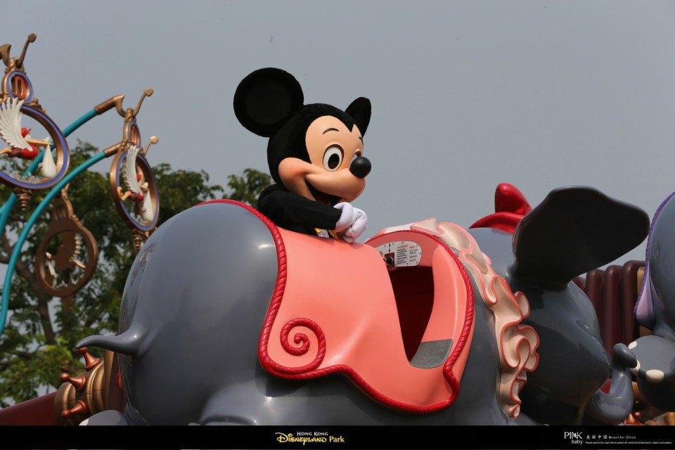 小飞象~~是不是很可爱呢?