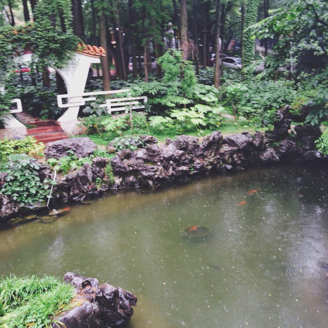 武汉中南花园饭店图片