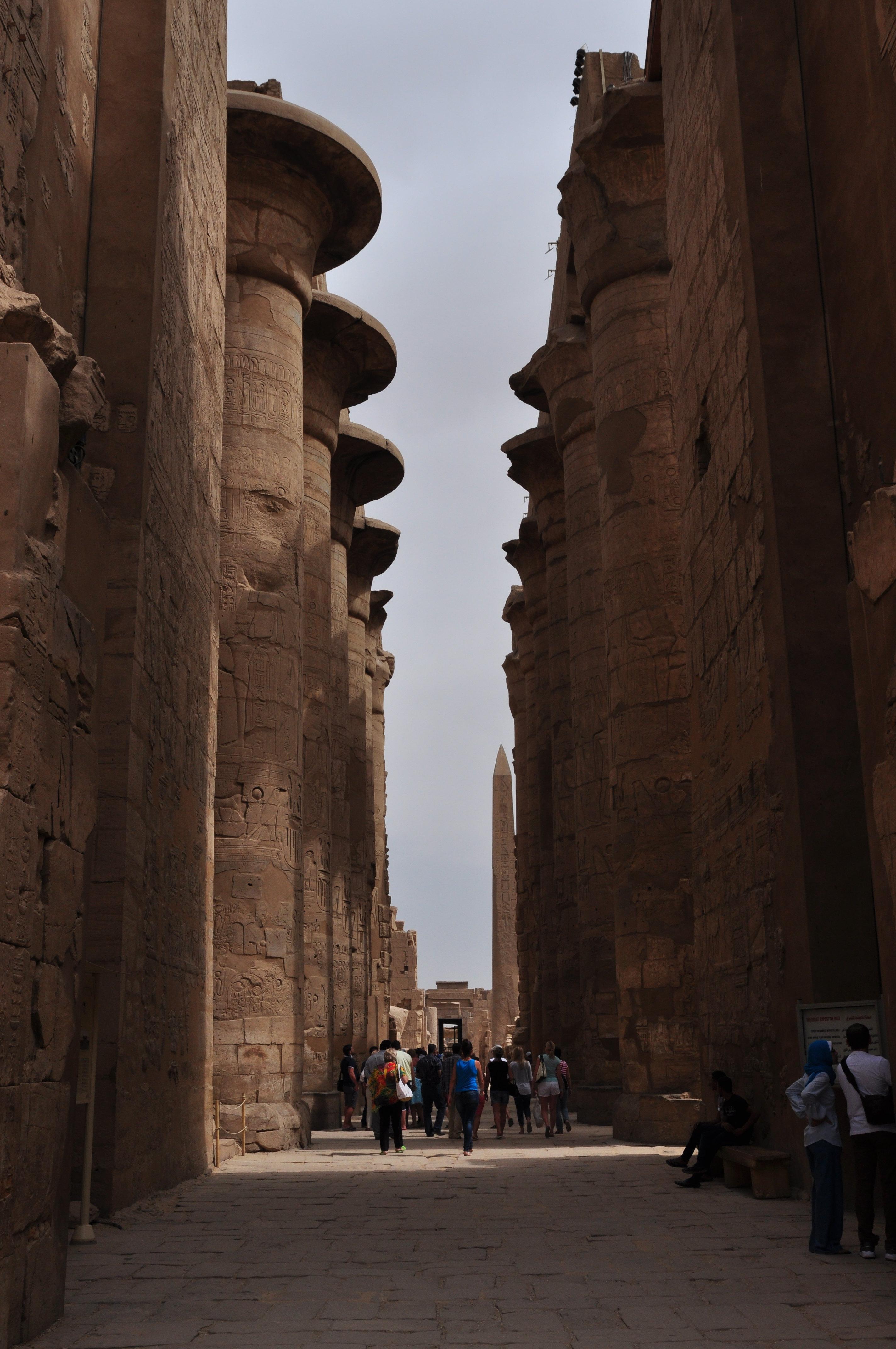 古埃及人认为纸莎草是太阳生命力的象征图片
