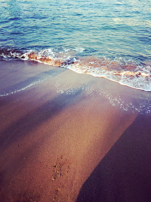 贝壳海滩手机壁纸