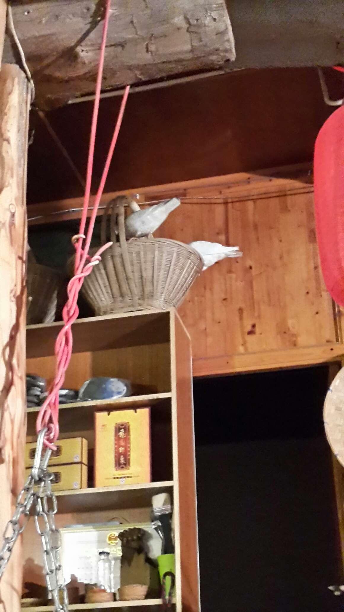 腾冲市木架房装修图片