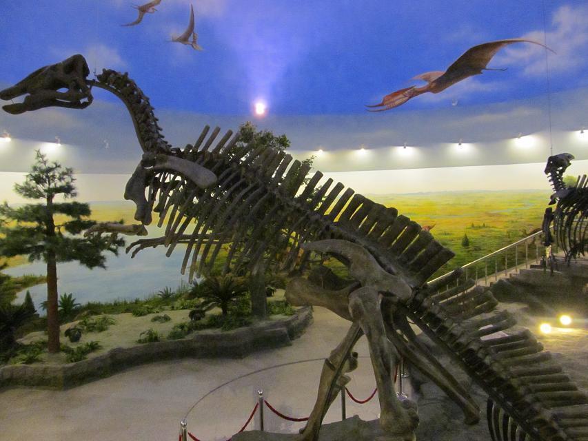 伊春嘉荫恐龙博物馆